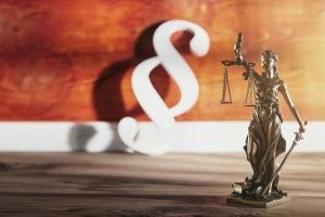 Den Ablauf bei einem Schutzschirmverfahren regelt § 270b der Insolvenzordnung (InsO).
