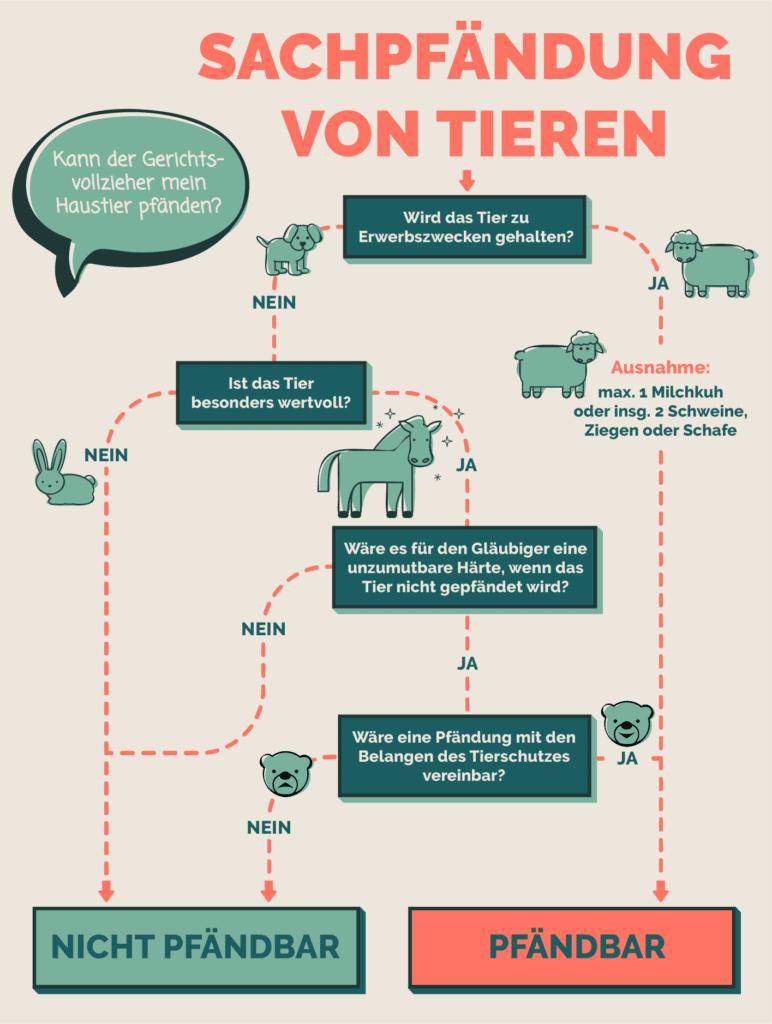 Unsere Infografik veranschaulicht, dass Haustiere gewöhnlich nicht der Zwangsvollstreckung in bewegliches Vermögen unterliegen. (Für größere Ansicht auf die Grafik klicken.)