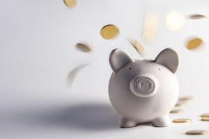 Oft machen Inkassounternehmen überhöhte Kosten geltend.