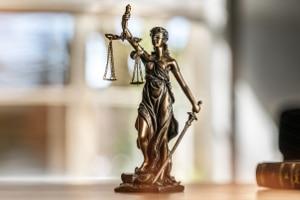 Welche Rechte haben Gläubiger im Insolvenzverfahren?